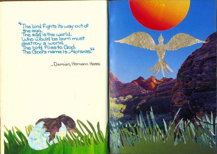 bird egg world english