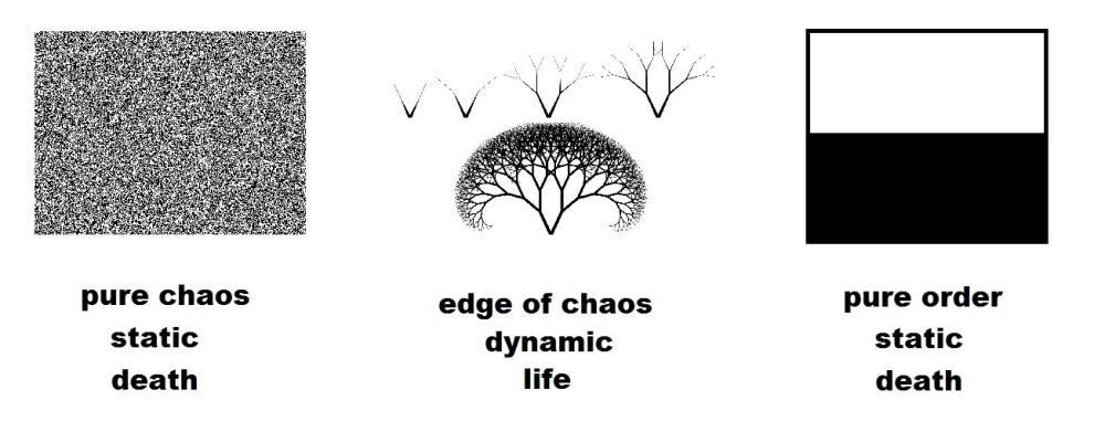 edge of chaos.jpg
